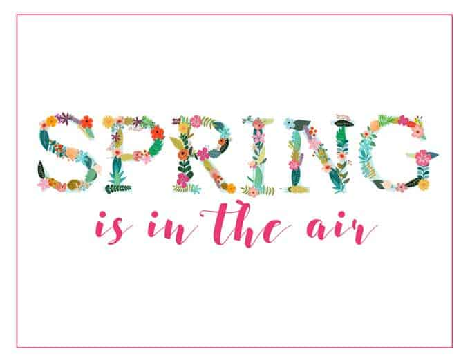 spring is in the air graphic with flowers