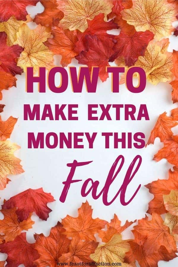 "autumnal colored leaves scattered on a white background with title text ""How to Make Extra Money this Fall"""