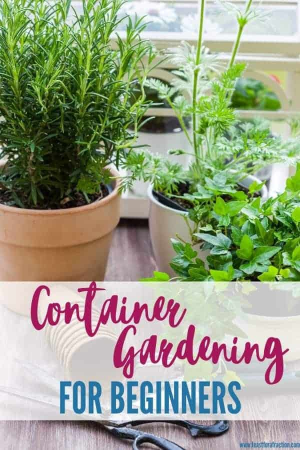"potting containers filled with herbs and flowers with title text ""container gardening for beginners"""