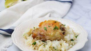 Instant Pot Cilantro Lime Chicken